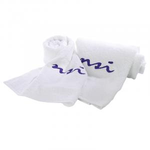 NSI Logo Hand & Bath Towels